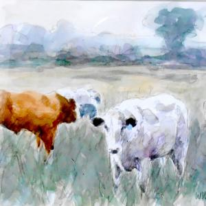 Wil Harvey Blyth Valley Cows. Watercolour sketch.