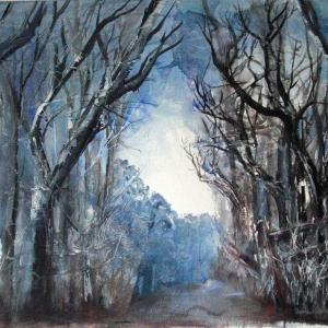 Woodland Walk Colour IBBAS August 2016 Annie Rice