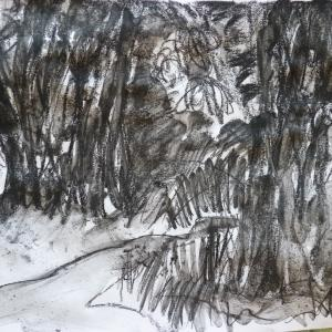 Ruth McCabe.Wenhaston. Shade under the big Sweet Chestnuts. Charcoal.