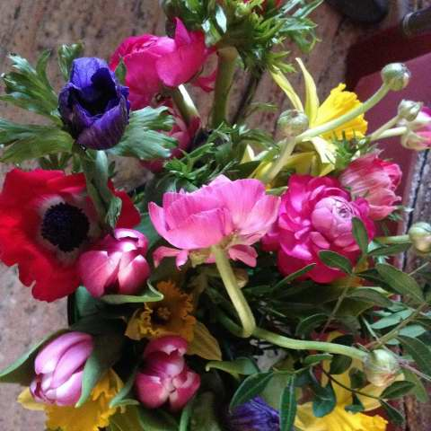 Wenhaston Flower Club - Tuesday 7th May