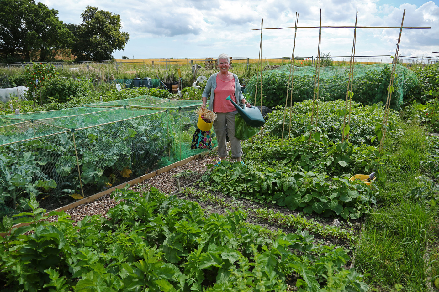 Putting Wenhaston on the National Allotment Map